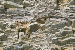 Texture of the coastal cliff Stock Images