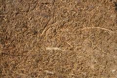 The texture of coconut fibers with high-resolution. The texture of brown coconut fibers with high-resolution stock photos