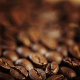 Texture Coffee Bean Stock Photography
