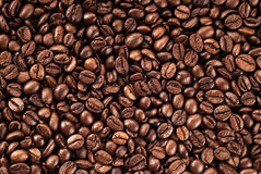 Texture of coffee beans Royalty Free Stock Images