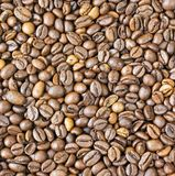 Texture coffee beans Royalty Free Stock Images