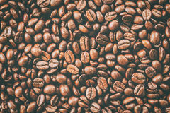 Texture of coffee beans that suitable for background, backdrop, wallpaper, display and everything about coffee artwork . Stock Images