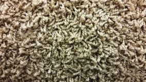 Texture Coffee carpet, Royalty Free Stock Image