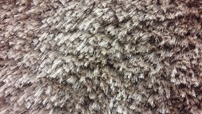 Texture Coffee carpet, Stock Images