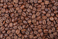 Texture of Colombia Supremo gourmet coffee. Macro photo Royalty Free Stock Photos
