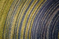 Texture colorée Images stock