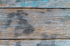 Texture and color of old  log Royalty Free Stock Photo