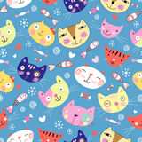 Texture of colored cat Stock Photography