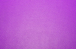 Texture colored leatherette  , for design and upholstery for dec Stock Photography