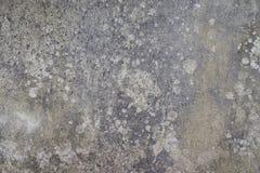 Texture of concrete, blank grey concrete backdrop,cement surface Royalty Free Stock Photos