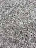 Texture of concrete floor. Stock Image