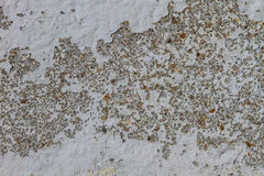 Texture Concrete Old Wal Royalty Free Stock Photography