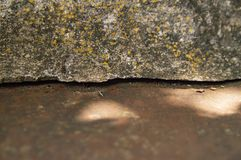 Texture of a concrete and rusty iron surface. Macro photo. Background royalty free stock photos