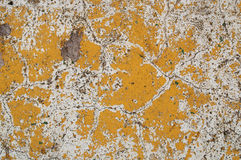Texture concrete wall. Textured old concrete wall painted with yellow paint Royalty Free Stock Photos