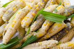 Texture of cooked peeled corn pod. There are parti-colored of wh. Ite, yellow, purple, red,black Stock Images