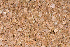 Texture of cork Royalty Free Stock Images