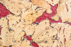 Texture of cork board wood surface, natural wooden decorative panel Stock Photos