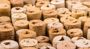 Texture cork from wine bottles Stock Images