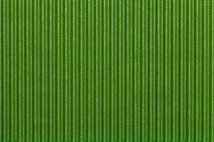 Texture corrugated green paper. Striped background Stock Images