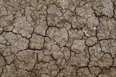 Texture of crack dry solid. Texture dry soild. Soilded broken Stock Photos