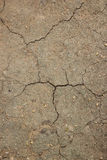 Texture crack earth from hot weather Royalty Free Stock Image