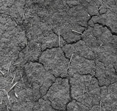 Texture crack earth from hot weather Stock Photos