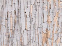 A texture of cracked blue paint. On wood Royalty Free Stock Photos