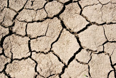 The texture cracked ,dry the surface of the earth.  stock photo