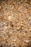 Texture of cracked earth Royalty Free Stock Photography