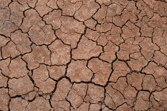 The texture of cracked earth. Dry soil without water. Background for design on the theme of the concept of ecology. royalty free stock photography