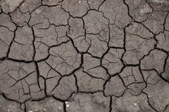 The texture of cracked earth when drying up water bodies. Background image texture. Template to use as a background. Place for text stock photography