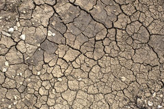 Texture of cracked earth Royalty Free Stock Image