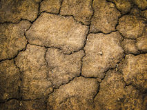 Texture of cracked soil Royalty Free Stock Photography