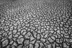 Texture of cracked soil ground. In a dry season stock image