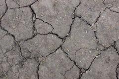 Texture cracked soil Royalty Free Stock Photo