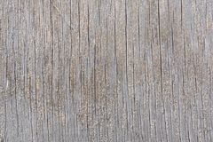 The texture of a cracked wooden board with fibers on the surface.  royalty free stock photos