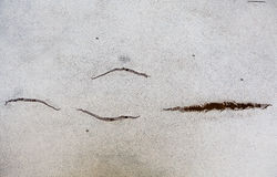 Texture cracks on artificial skin Stock Images