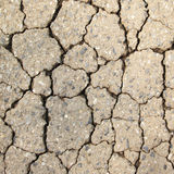 Texture of Cracks on asphalt background Royalty Free Stock Photography