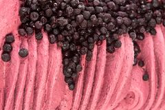 Texture of creamy ice-cream with blueberries close-up. stock photography