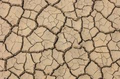 Texture criquée brune sèche de la terre Photo libre de droits