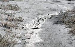 Texture criquée de boue de la terre sèche photo stock