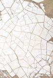 Texture criquée sèche de boue Photos stock