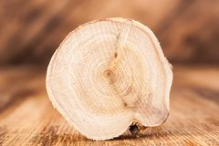 Texture of cross section juniper wood. Pattern of tree stump background. Circles slice of juniper. Texture of cross section wood logs. Pattern of juniper tree royalty free stock image