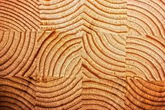 Texture of a cross-section of a pine tree close-up, cross-section of annual rings. Texture of a cross-section royalty free stock photos