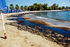 Texture of crude oil spill on sand beach from oil spill accident, Agios Kosmas bay, Athens, Greece, September 14 2017. royalty free stock photo