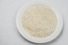 Texture crue de riz photographie stock