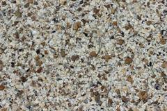 Texture of crushed seashells background Royalty Free Stock Photo
