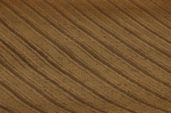 Texture of cultivated field Stock Images