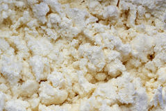Texture of the curd with sugar. The texture of the curd with sugar Royalty Free Stock Photo