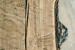 The texture of the cut of an old tree trunk. Background Royalty Free Stock Photography